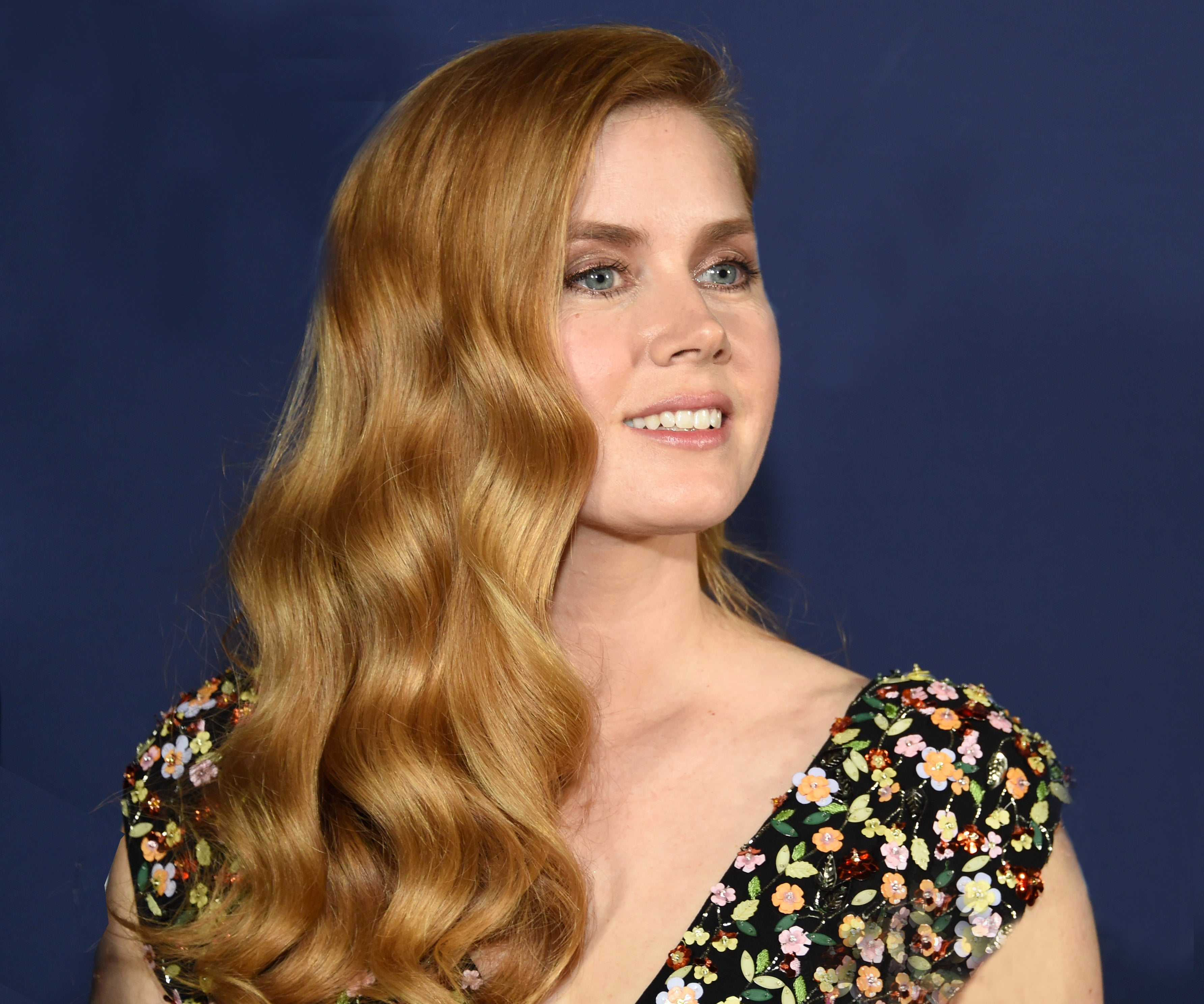 Images Amy Adams naked (16 photo), Pussy, Fappening, Twitter, underwear 2018