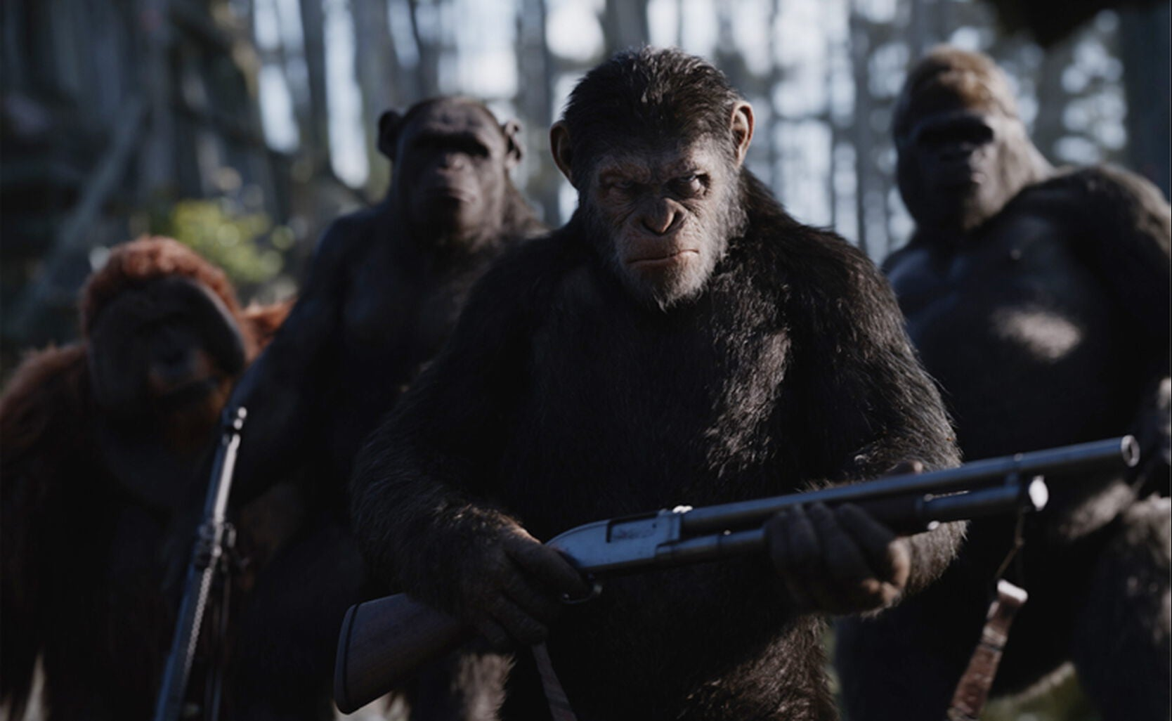 """Scene from """"War for the Planet of the Apes"""""""