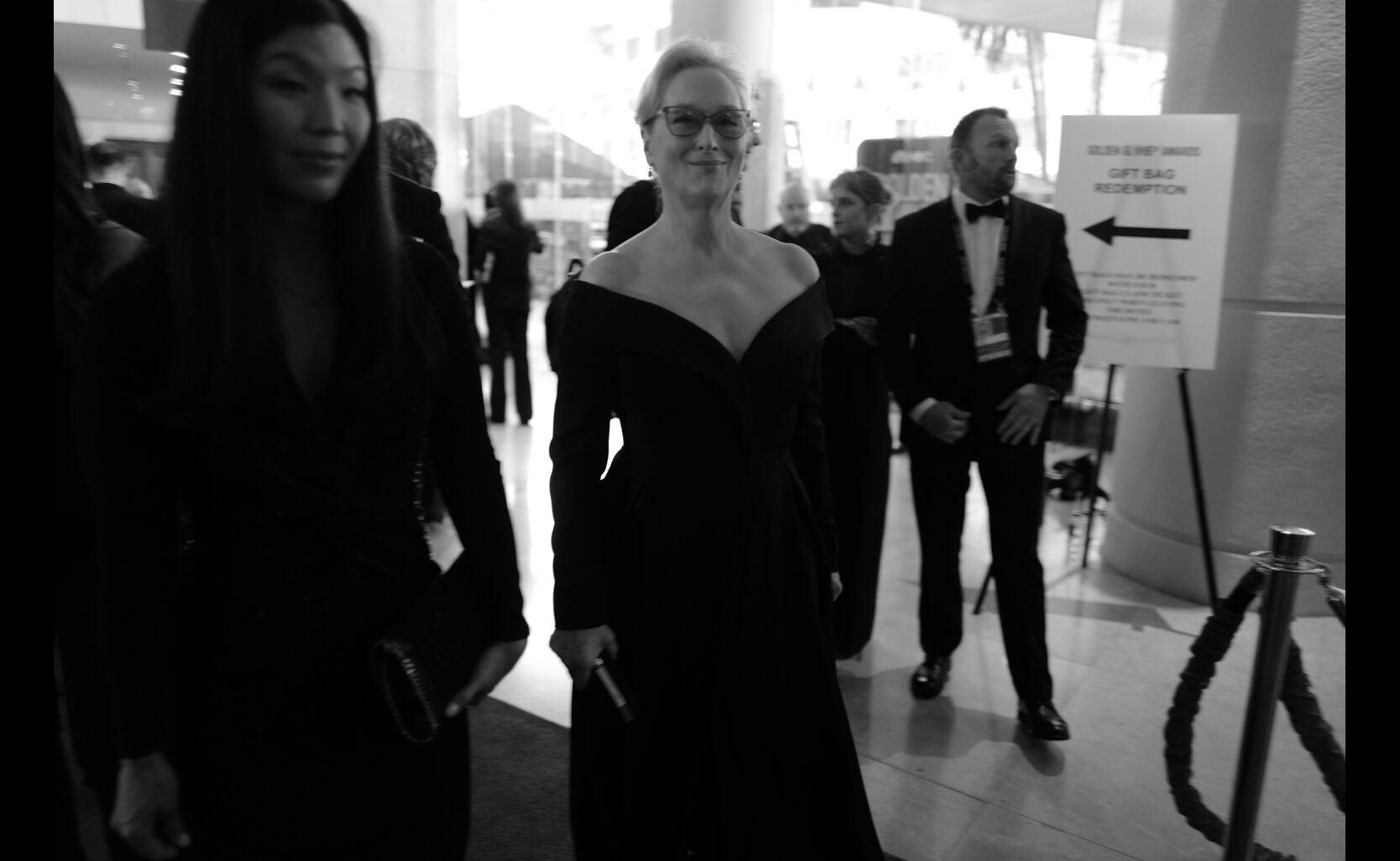 Actress Meryl Streep, Golden Globe winner and nominee