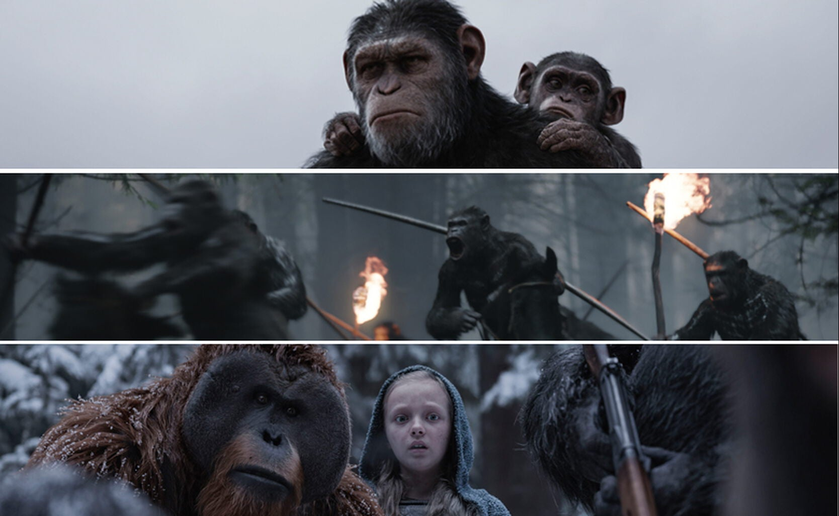 """Scenes from """"War for the Planet of the Apes"""""""