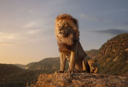 "A scene from ""The Lion King"", 2019"