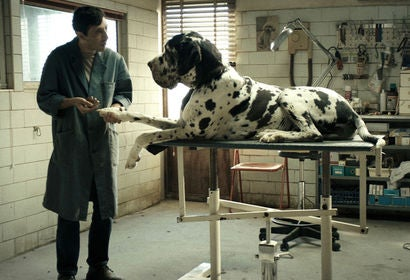 "Scene from ""Dogman"" (2018)"