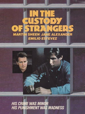 In the Custody of Strangers movie poster