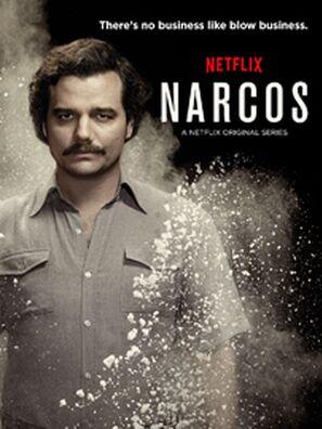 Narcos (2015) Hindi Dubbed Complete Season 1 NETFLIX